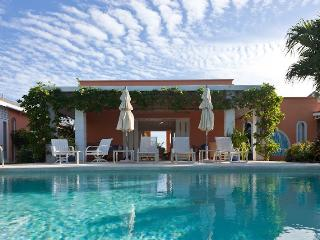 Gorgeous 4 bedroom Villa in Mustique with Internet Access - Mustique vacation rentals