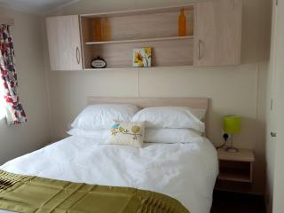 Newquay Deluxe Holiday Homes  No.48 (dog-friendly) - Newquay vacation rentals