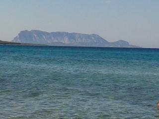 VILLA TRA I MILLE PROFUMI,SAPORI,COLORI 1Km.daMARE - Tanaunella vacation rentals