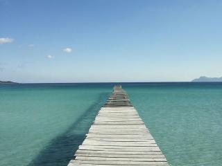 Natividad - Flat Port Alcudia , 30 m. to the sea - Puerto de Alcudia vacation rentals