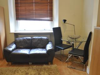Large Family Studio - London vacation rentals