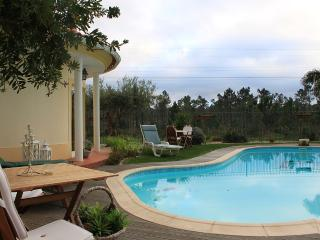 Charming Villa for FAMILIA - Pool, Spa, best beach - Verdizela vacation rentals