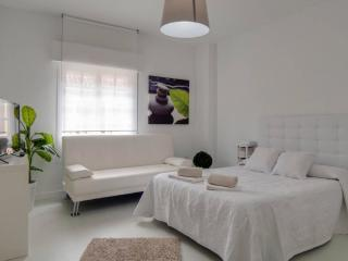 Luxury Studio Old Town - Malaga vacation rentals