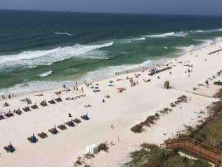 910 Majestic Beach Resort Tower I - Panama City Beach vacation rentals