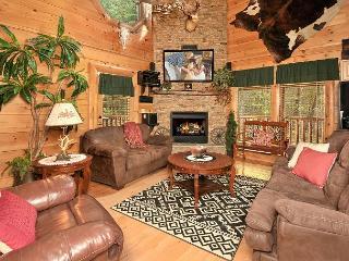 Luxurious 2/2 with Indoor/Outdoor Resort Pool, Sleeps 11 - Pigeon Forge vacation rentals