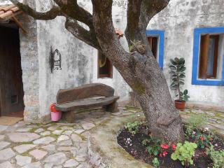 Beautiful countryhouse in Cilento near the sea!! - Lentiscosa vacation rentals