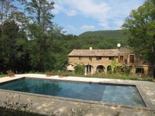 Nice Gite with Internet Access and Microwave - Saint-Andre-d'Olerargues vacation rentals