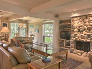 Ground Floor  Slope Side  Ski In, Ski Out Condo! - Snowmass Village vacation rentals