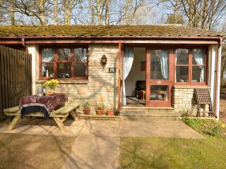 Holiday bungalow, St Ives,  Indoor heated Swimming Pool - Saint Ives vacation rentals