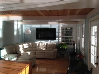 Nice Chalet with A/C and Game Room - Blue Sea vacation rentals