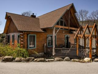 Black Bear Cottage - Sapphire vacation rentals