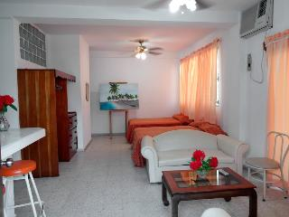 Best ApartHotel @ Best Price Apt #1 - Tela vacation rentals