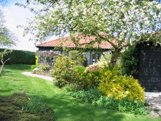 Nice 1 bedroom Stonham Aspal Cottage with Internet Access - Stonham Aspal vacation rentals
