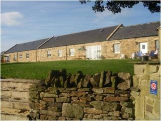 Hamsteels Hall Holiday Cottages -The Clydesdale - Durham vacation rentals