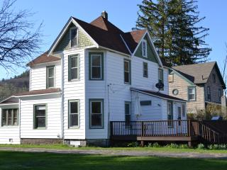 Beautiful House in the Catskills.  East Branch, NY - East Branch vacation rentals