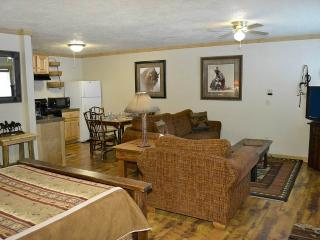 Nice Teton Village Studio rental with Internet Access - Teton Village vacation rentals