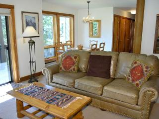 Lovely 2 bedroom Condo in Teton Village - Teton Village vacation rentals