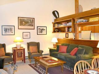 Comfortable 2 bedroom Wilson Apartment with Deck - Wilson vacation rentals