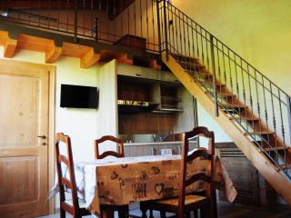 Nice Bed and Breakfast with Internet Access and Wireless Internet - Monzambano vacation rentals