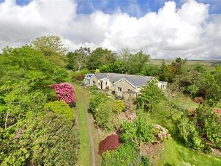 Lovely 4 bedroom House in Buckfastleigh - Buckfastleigh vacation rentals