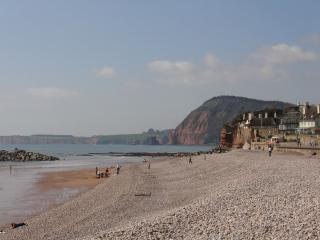 Nice House with Internet Access and DVD Player - Sidmouth vacation rentals