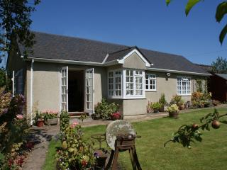 Wolston Cottage - Ashburton vacation rentals