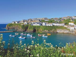 Kammneves Cottage, Trelights, Cornwall - Port Isaac vacation rentals