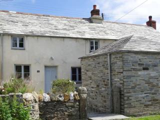 Wonderful House with Internet Access and DVD Player - Delabole vacation rentals