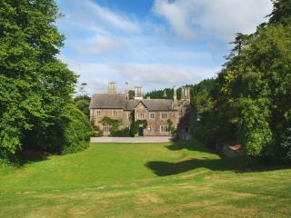 Gorgeous House with Internet Access and Shared Outdoor Pool - Bodmin vacation rentals