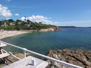 Lovely House with Internet Access and DVD Player - Falmouth vacation rentals