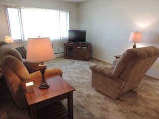 Lodge 2022 #1 Everything in Minot - Minot vacation rentals