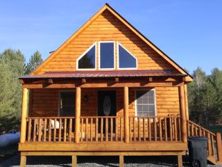 "Cole's Cabins ""The Dakota "" New Lakefront Cabin - Wells vacation rentals"
