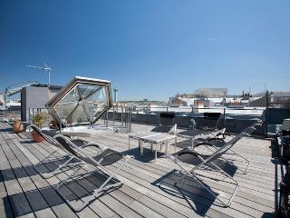 Marais Penthouse - Unique Rooftop terrace and View - Paris vacation rentals