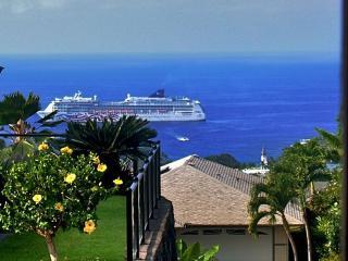 Spectacular OCEAN VIEW 2/2 Villa private yard - Kailua-Kona vacation rentals