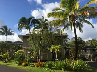 Comfortable House with Internet Access and Satellite Or Cable TV - Princeville vacation rentals
