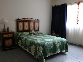 Casa De Dani- Febe Private Room - Guadalajara Metropolitan Area vacation rentals