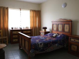 1 bedroom House with Internet Access in Guadalajara - Guadalajara vacation rentals