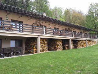 Apartmány Lipno - Dobrá Voda - Horni Plana vacation rentals