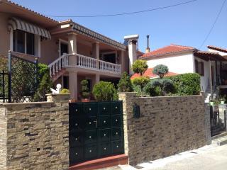 Luxury Family Villa near Meteora - Meteora vacation rentals