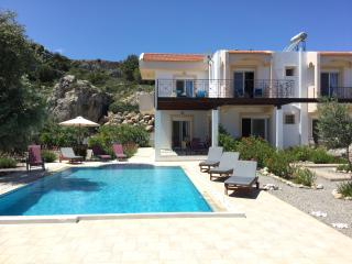 Luxury Villa, Large Private Pool, Four Bedroom - Archangelos vacation rentals