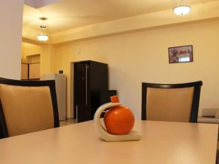 Alley Residence 1 bedroom Apartments, New Building - Yerevan vacation rentals