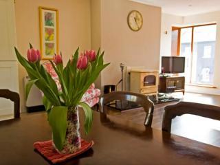 Comfortable 3 bedroom Condo in Clifden - Clifden vacation rentals