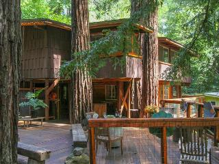 Relaxing getaway in a Tree House nestled right in the Redwoods - Guerneville vacation rentals