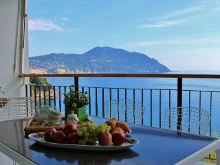 Beautiful Condo with Internet Access and Television - Sori vacation rentals