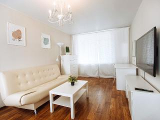 Nice Condo with Housekeeping Included and Television - Vologda vacation rentals