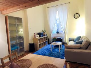 Beautiful Condo with Internet Access and Dishwasher - Krakow vacation rentals