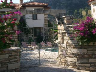 TAS VILLA - Dalyan vacation rentals