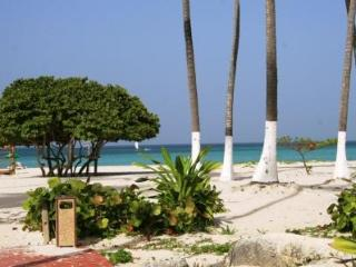 Beautiful apartment sea view, 2 bedrooms and 2 bat - Bavaro vacation rentals