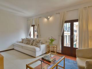 Great Apartment in the Old Town Of Palma - Palma de Mallorca vacation rentals