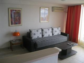 1 bedroom Apartment with Internet Access in Struga - Struga vacation rentals